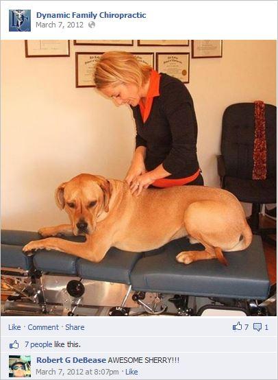 Kay adjusting dog