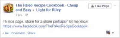 Riley 58 Paleo spam