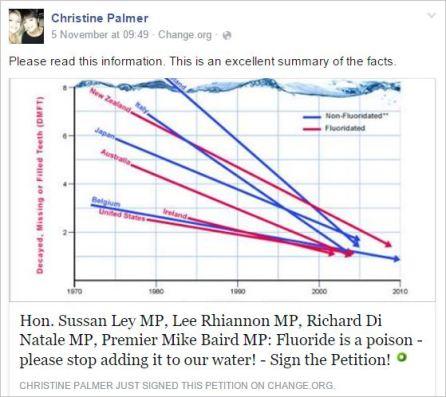 Palmer 3 anti fluoride