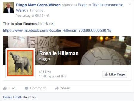 UW 9 Dingo Rosalie